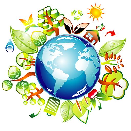 Экологические загадки