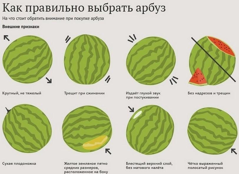 Все признаки спелого арбуза