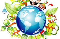 Загадки на экологическую тему